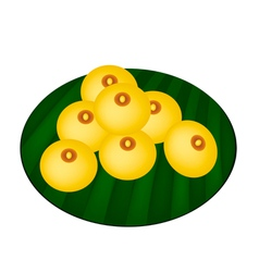 Charming moon or rice flour dumplings vector