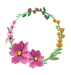 flower anemone crown decoration vector image vector image
