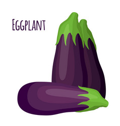 purple eggplant in cartoon flat style natural vector image vector image