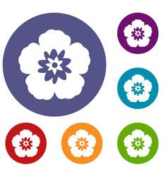 Rose of sharon korean flower icons set vector