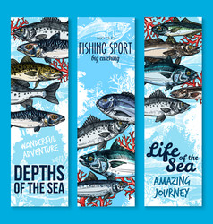 sea fishing and seafood banners vector image vector image