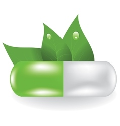 Herbal pill vector
