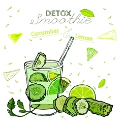 Detox cucumber smoothie vector