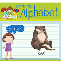 Flashcard letter S is for seal vector image vector image