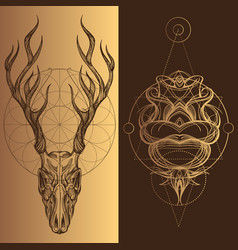 skull of a deer with horns a set of elements in vector image vector image