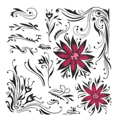 Swirls and curls set vector image