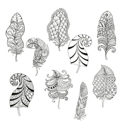 Zentangle stylized nine feathers for coloring page vector
