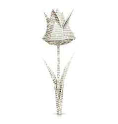 tulip paper origami flower vector image