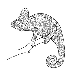 Chameleon animal coloring book for adults vector