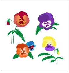 Creative hand-drawn pansies vector