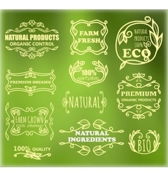 Vintage badges for eco products vector
