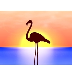 silhouette flamingo on a background sunset vector image vector image