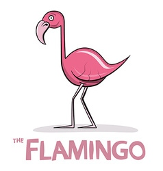 Flamingo Cartoon Pink Bird vector image