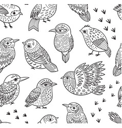 Seamless pattern with ink hand drawn exotic birds vector