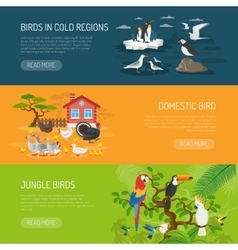 Bird horizontal banners set vector