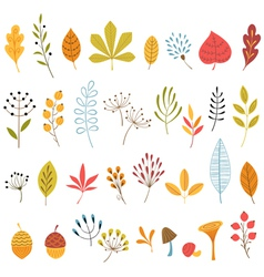 Autumn floral design elements vector image vector image