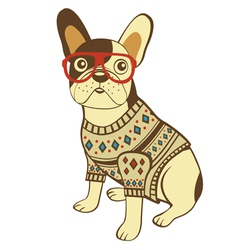 Bulldog in glasses and sweater vector