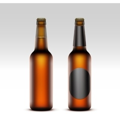 Set of Closed Blank Glass Bottles with Light Beer vector image