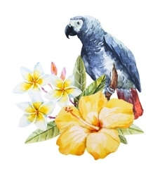 Watercolor hibiscus flower and parrot vector