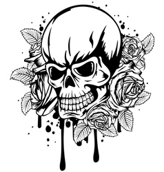 skull roses vector image vector image