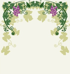 Decorative grapes vector