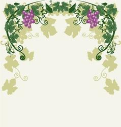 Decorative grapes vector