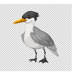 Wild bird on transparent background vector