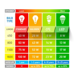 Light bulb comparison chart infographic vector image