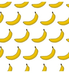 Colorful seamless pattern of bananas vector