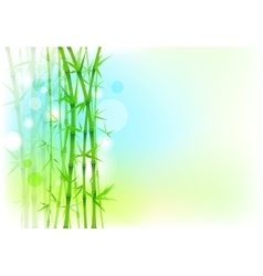 Bamboo trees asian backdrop vector