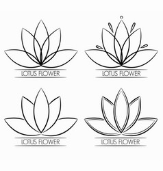 Floral lotus flower logo abstract vector