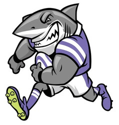 Rugby shark mascot vector