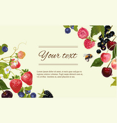 Berry horizintal banner vector