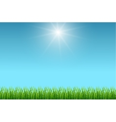 Clean blue sky and green grass background vector