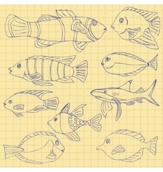 Sketch of sea fish vector