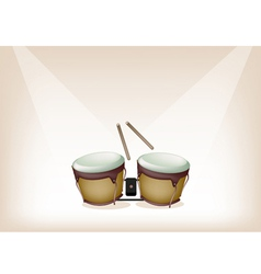 Beautiful Bongo on Brown Stage Background vector image