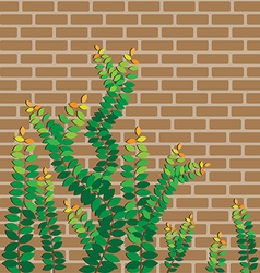 Green leaves on the brick wall vector