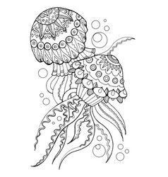 Jellyfish coloring book vector