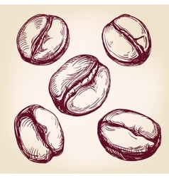 Coffee beans set hand drawn llustration vector