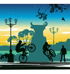 Evening cyclist vector
