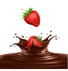 strawberries dipped in chocolate vector image vector image