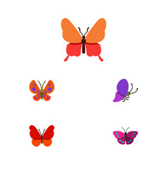 Flat monarch set of archippus monarch moth and vector
