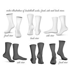Basketball socks front side vector