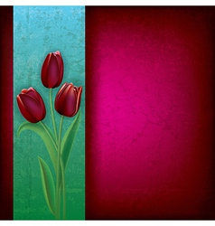 abstract purple grunge background with red tulips vector image vector image