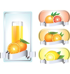 citrus labels vector image vector image