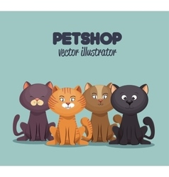 Petshop care and grooming mascot graphic vector