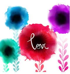 watercolor romantic blooming poppy flowers vector image