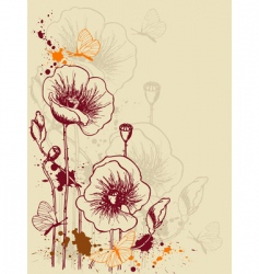 floral background with poppies vector image