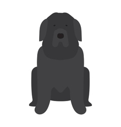 Black Labrador retriever dog domestic animal vector image