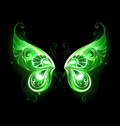 Green fairy wings vector
